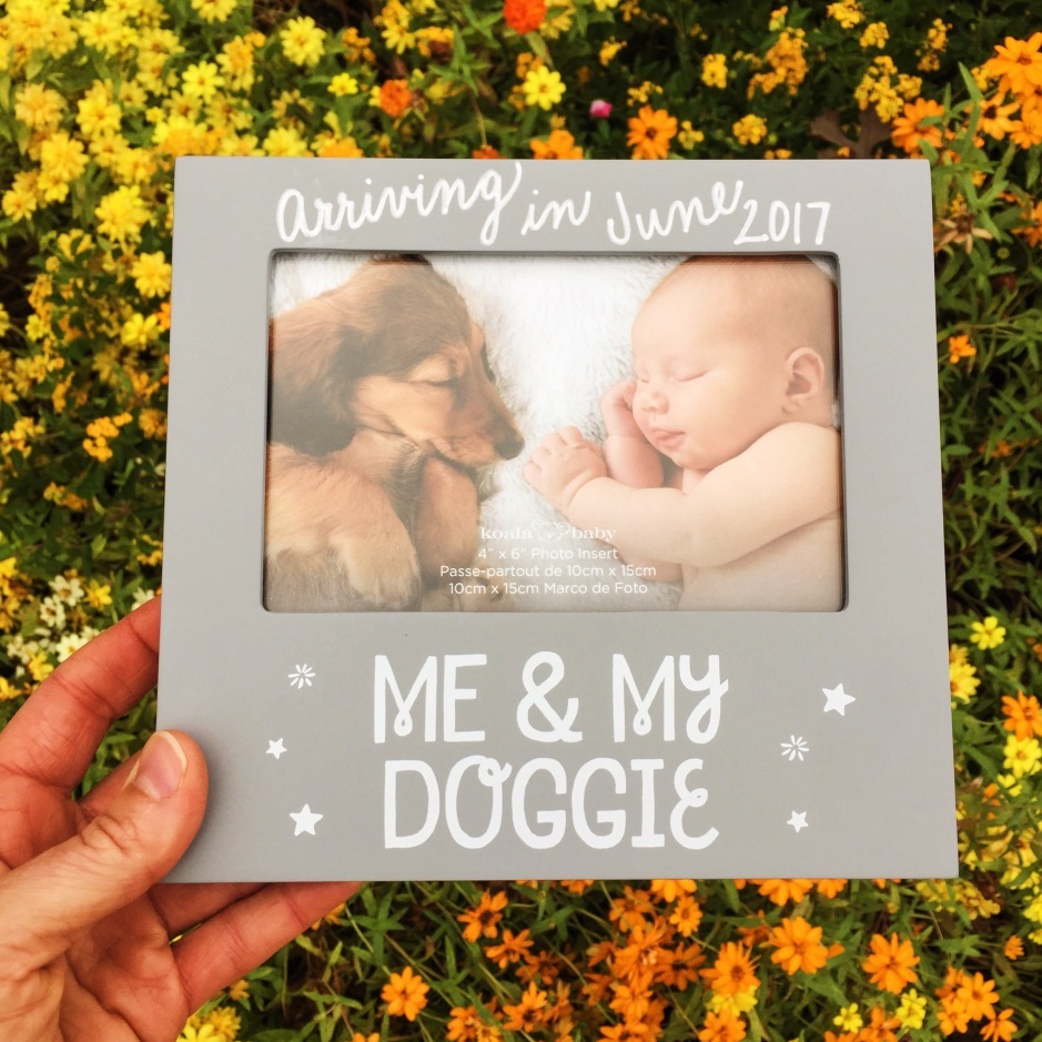 baby announcement with puppy dog picture frame